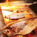 肉×魚×日本酒 照 - 『炙り鮮魚・炙り肉』