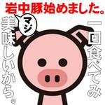 岩中豚ロースかつ定食(小)
