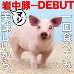岩中豚赤身テンダーかつ定食(小)