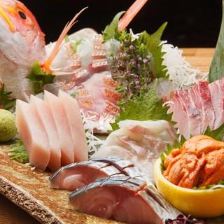 築地市場から仕入れた新鮮な旬の魚がいただけます