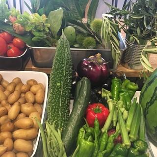 野菜ソムリエのオーナーシェフが選ぶお野菜!
