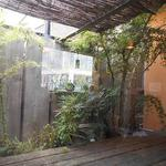 そば草香 - 内観:お庭