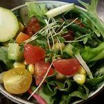 54428999 - 野菜サラダ