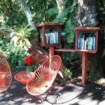 ジャングルブックカフェ - 本があります