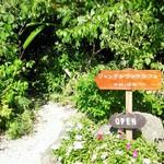 ジャングルブックカフェ - 入口はこちら