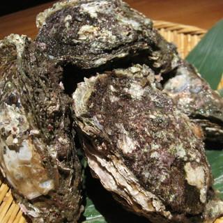 天然「岩がきポン酢」新潟の漁師から直行便です♪