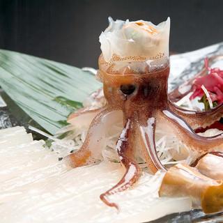活イカ常時入荷!函館で活イカを食べるなら「海光房」!!