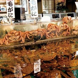 北海道最大級の店内の大型水槽から食べたいものを選んで。