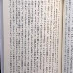 銀座千疋屋 - バナナに関する記述1