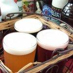 ザンク - 生ビール3種お試しセット