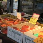 フルーツ童夢やまだ農園 - 採れたての季節のフルーツ販売