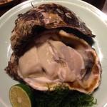 54678105 - 高知産岩牡蠣は20センチはあろう・・でかいくミルキィ!!