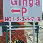 Ginga -