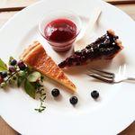ミオン ガーデンカフェ - Dessert Set(チーズタルト/ブルーベリーのタルト)1,200円+税 2016/08