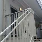 シュラスコB - シュラスコB 八王子支店の入口です