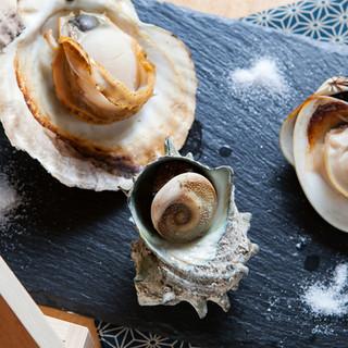 ■築地から仕入れた新鮮な魚貝類■