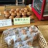 甲田菓子店 - 料理写真: