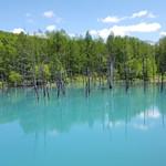 カフェ&レストラン バーチ - おまけ2、青い池にようやく到着っす。