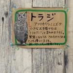ふくろうカフェ フク×フク - トラジ
