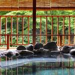 割烹旅館 湯の花荘 - 離れの客室『武蔵』の露天風呂(2016年8月)