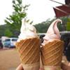 ふれあいの郷直売所 売店 - 料理写真:那須大好き牛乳入りソフトクリーム & スカイベリーソフトクリーム