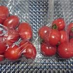 55096266 - トマト