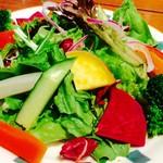 Oyster Bar ジャックポット - いろんなお野菜のっけ盛りサラダ