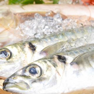 「新鮮な魚」