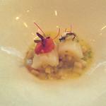 55219128 - 烏賊と根セロリ、グレープフルーツと白バルサミコのソース