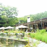 ミオン ガーデンカフェ - お庭から見た店舗 2016/04