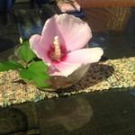 55320822 - テーブルの上の花