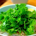 ベトナム食堂 Vina Cafe ・Dalat - パクパク、パクパク
