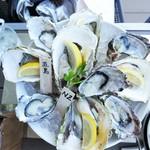 貝殻荘 - 生牡蠣盛り合わせ