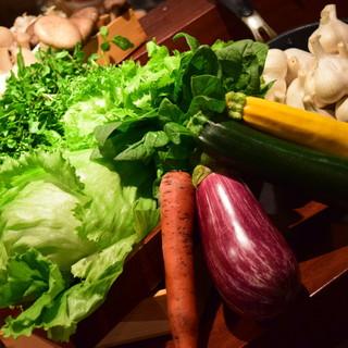 農家直送のオーガニック野菜