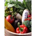 いっとう - 超新鮮お野菜にこだわってます