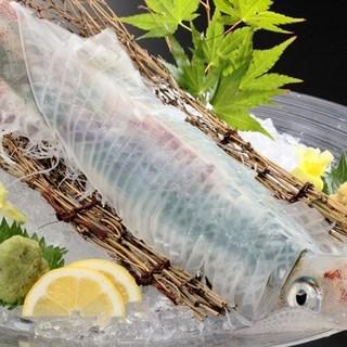 全国各地の厳選した美味しいお魚活イカが食べれる店