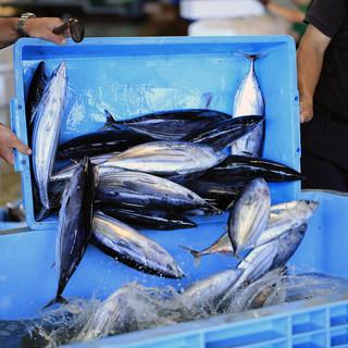 鹿児島で「朝とった魚」を競り落とし、12時間後にご提供!