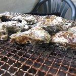 かきの里 - 網の上の牡蠣