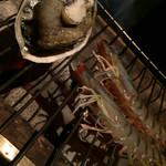 55966895 - アワビの残酷焼きと車海老の串焼き