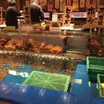 函館海鮮料理 海寿 - テーブル目の前の生簀