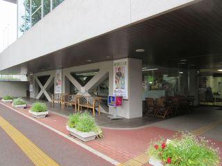 秋桜 - 2016/09/12撮影