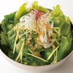 お好み焼肉 道とん堀 - 江戸菜サラダ