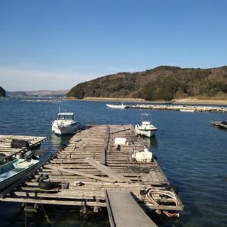 伊勢志摩・熊野灘直送新鮮な活魚・鮮魚