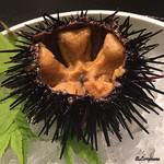 お料理 七草 - 殻付き海胆