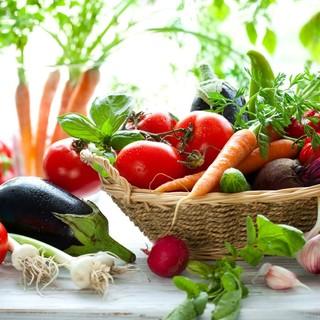 シェフが市場で毎日仕入れる新鮮な食材で作るイタリアン