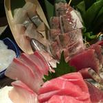 新橋魚金 - 中とろ、ナマたこ、アジ、カツオ、ブリ、スズキ、カンパチ