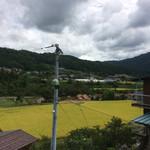仁太郎 - ちょいとお散歩兼ねて近くの床屋さんへ❗️叔父自宅の周りはこんな風景が広がります❗️空気が澄んだお気に入りの風景です❗️