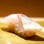 まんてん鮨 - カマス炙り(松輪)