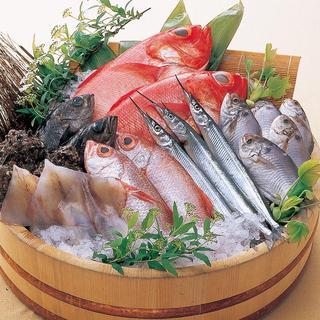 産直鮮魚!木津市場から仕入れる新鮮な魚貝を御堪能下さい。