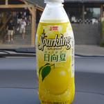 道の駅 北川はゆま - スパークリング日向夏